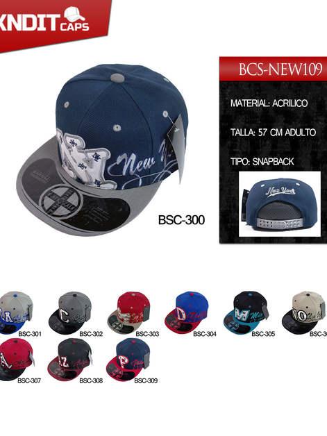 BSC-300-309-NEW109.jpg