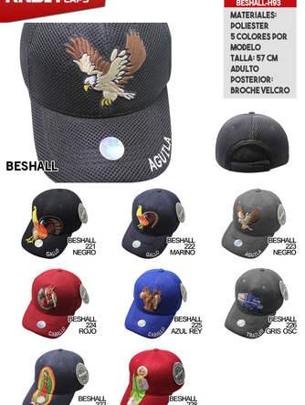 BESHALL-H93.jpg