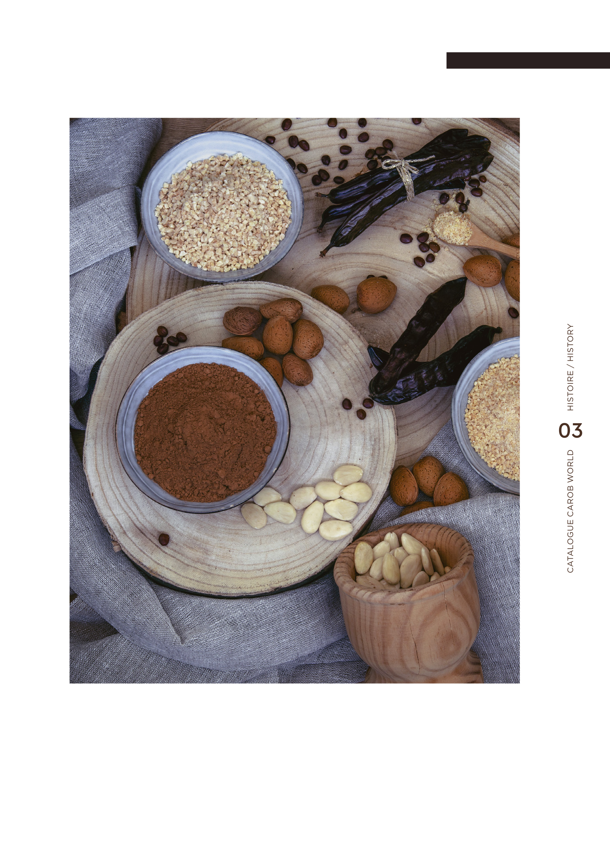 Brochure_FR-EN (glissé(e)s) 5