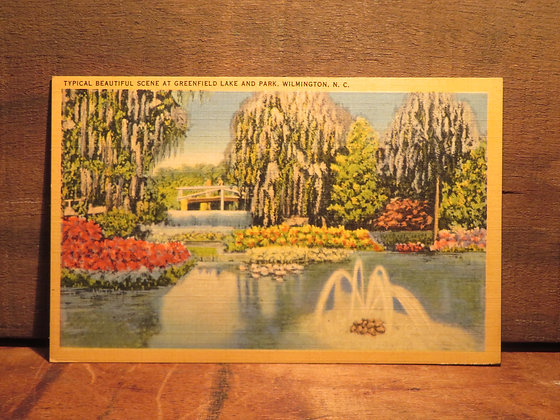 Greenfield Lake and Park, Wilmington, North Carolina