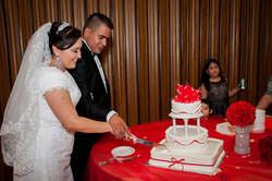 AVP Wedding Photos_127