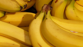 Agriculture: the success of Pacific bananas - 21/08/2049