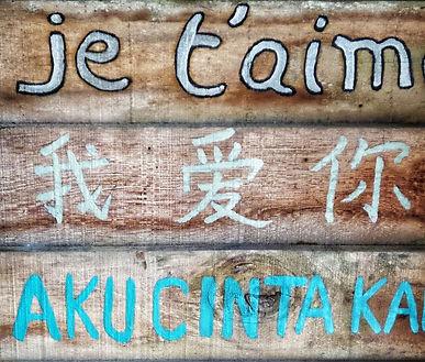 Live a new language