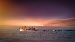 Droits de pêche des îles menacées de montée des eaux : le casse-tête juridique – 11/02/2050