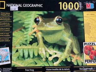 G5 Tree Frog