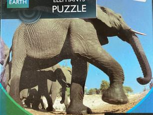 G29 Travelling Elephants