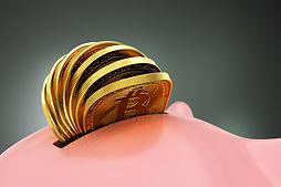 Bitcoin-piggy-bank.jpg