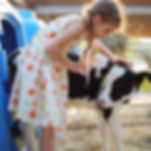 4-H funding solution