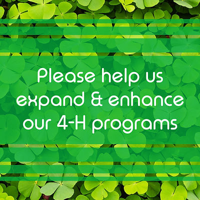 Growing Clover | Expand and Enhance 4-H Programs