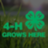 4-H Grows Here (1).png