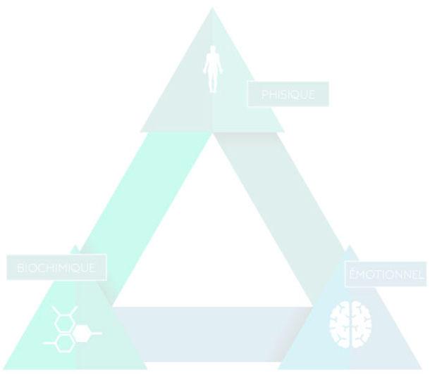 triangle-de-la-sante.jpg
