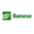 Logo_Banese.png