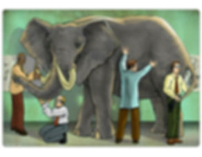 elephant%20scientist_edited.jpg
