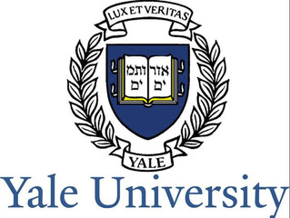Yale University Standing Column Well Investigation