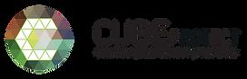 Cubeprotect logo