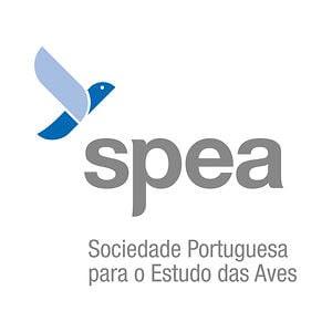 Oportunidade | SPEA