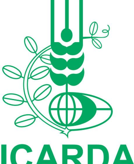 ICARDA.jpg