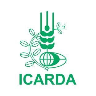 Associate Scientist - Agronomy | ICARDA