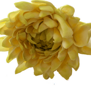 yellow dahlia resized comp.png