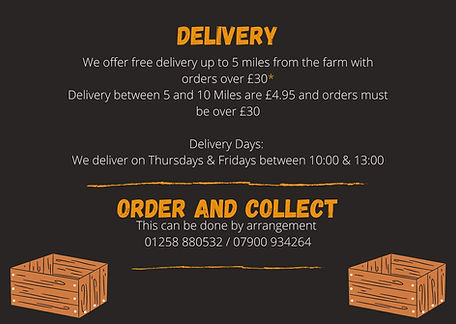 Delivery info.jpg