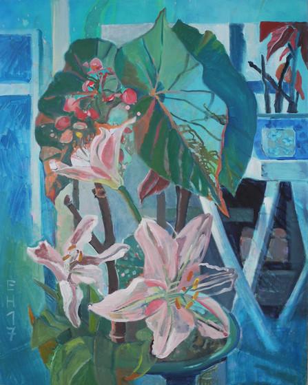 Claudias Pflanzen