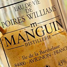 manguin1.jpg