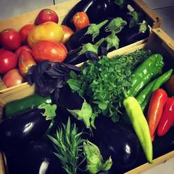 légumes bio du matin