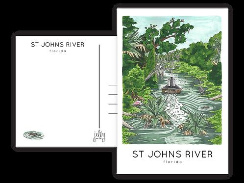 St Johns River Postcard by Jelly Press