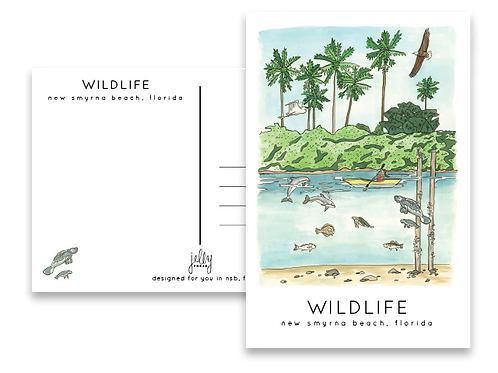 New Smyrna Beach Wildlife Postcard by Jelly Press