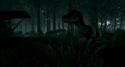 Hidden raptor