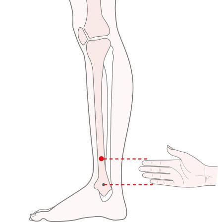 足の少陽胆経の懸鍾(けんしょう)