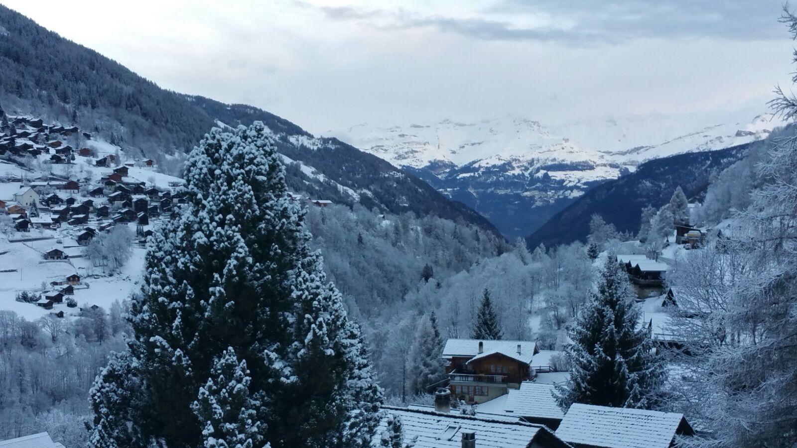 View snow