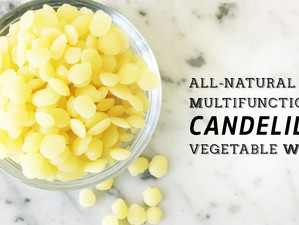 All-Natural and Multi-functional Candelilla Vegetable Wax