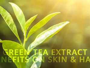 Green Tea Extract Benefits on Skin & Hair