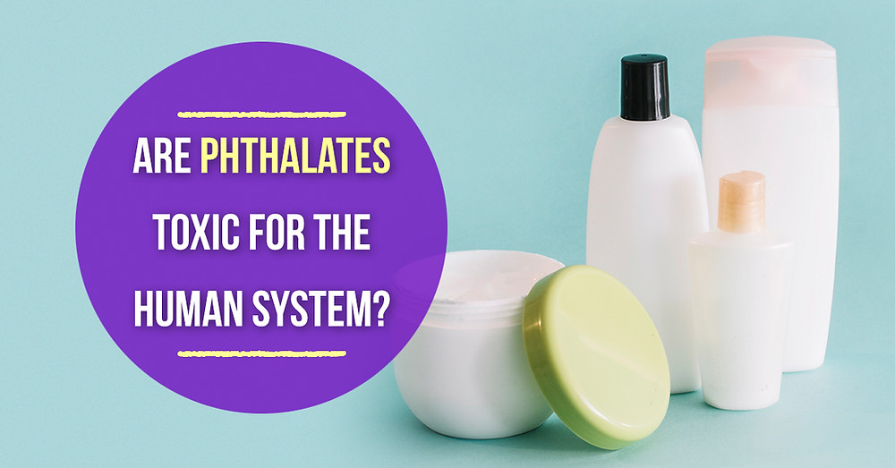 Phthalate Toxic for the Human system