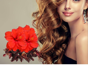 Tips for women dying hair at home - Ristrah