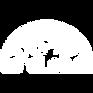 Logo color blanco.png