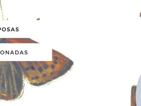 Mariposas Decepcionadas
