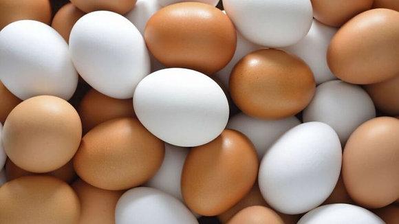 Huevos (Cartón)
