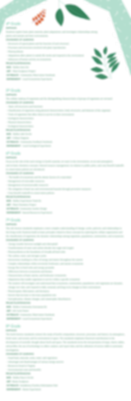 Bio_Box_SCAFFOLDING_CHART.png