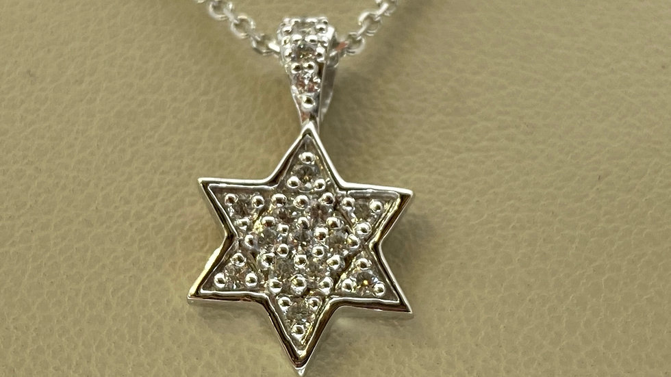 14K White Gold Star of David Pendant with Diamonds