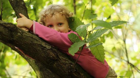Startuje rekrutacja do przedszkola leśnego w Borchówce