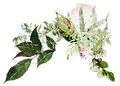 flower-bunch-10b.png