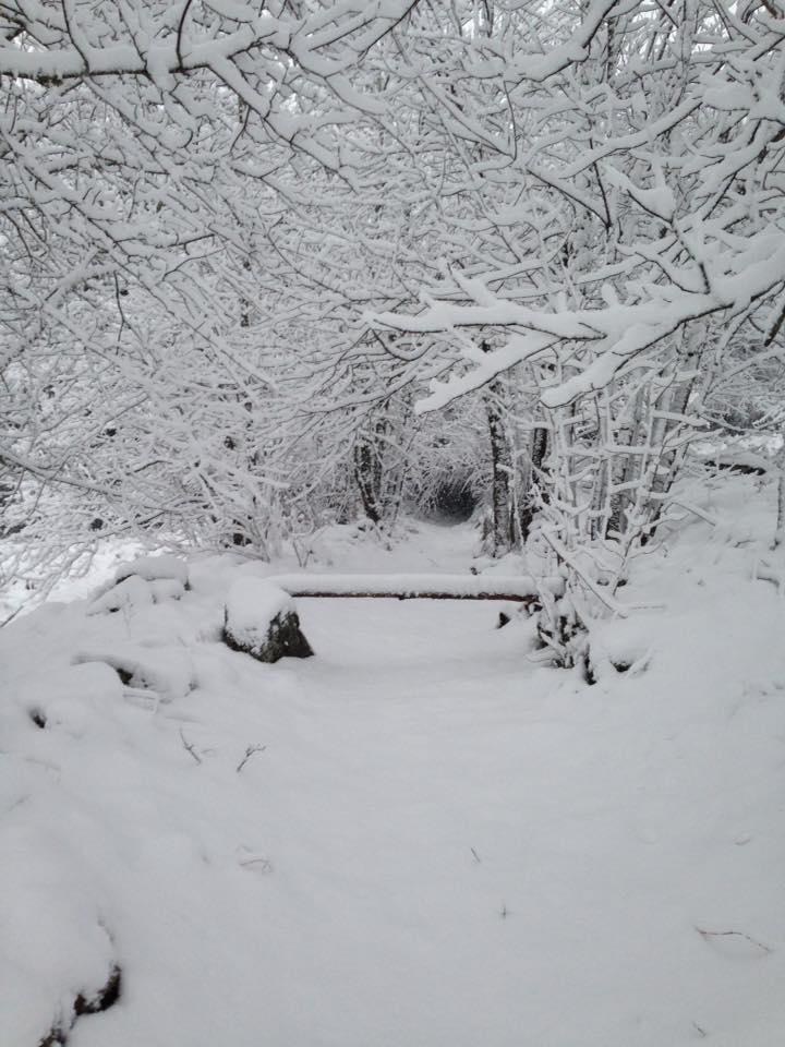 sentier domaine de Gory