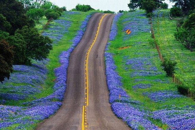Texas Hill Country.jpg