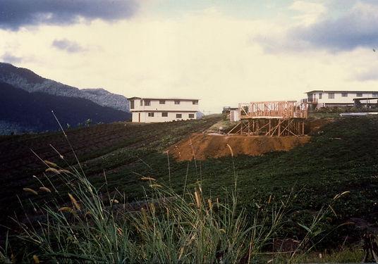 1981-02-10294802B.jpg