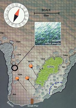 Карта дайвинг сайта Mango Bay