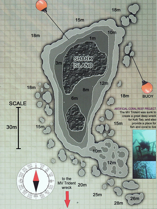 Карта дайвинг сайта Shark Island