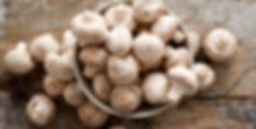 health-benefits-of-mushrooms-guide-700-3