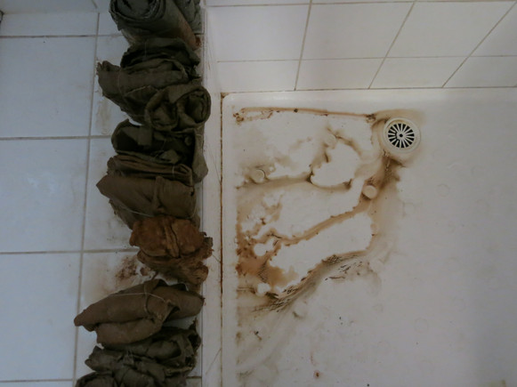Bathroom - House Conspiracy Residency, 2017, Digital Photograph